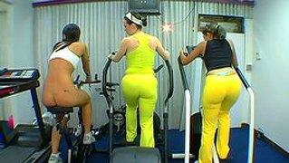 Three Big Booty Girls Showing Off Their Assets In The Gym