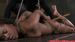Hogtied Ebony Bdsm Submissive Tormented
