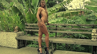 The High Heels Lady With Small Tits