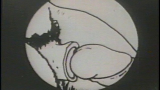 Vintage Porn Toon Featuring The Sex Adventures Of Eveready