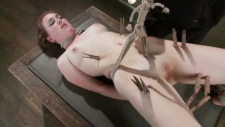 Sweet Pussy Tortured