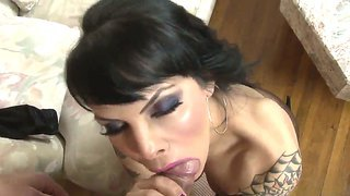 Jay Huntington Enjoys Having A Blowjob With Tranny Ts Foxxy Wich Blows Him Perfectly