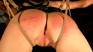 Bunette Fetish Babe Bdsm